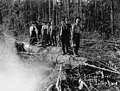 Schafer Brothers loggers and women standing on downed trees on Satsop River, Washington, ca 1905 (INDOCC 1323).jpg