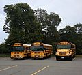 School Buses in Orleans.jpg