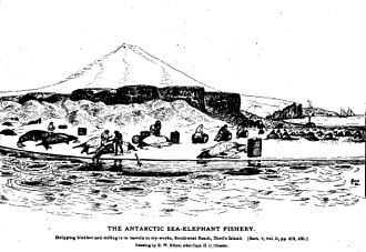 Heard Island and McDonald Islands - Processing elephant seals on Heard Island – a 19th-century scene