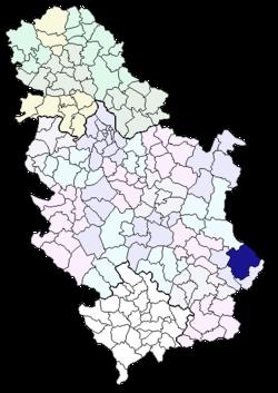 karta opstina srbije Opština Pirot   Wikipedia karta opstina srbije