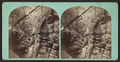Shadow Gorge, Freer's Glen, Schuyler Co. N. Y., from Robert N. Dennis collection of stereoscopic views.png