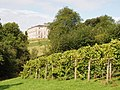Sharpham House and vineyard - geograph.org.uk - 956023.jpg