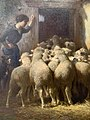 Sheep in Barn by Charles Clair, oil on canvas.jpg