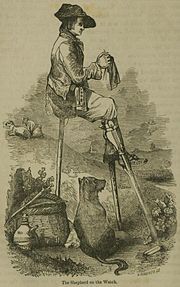 1855 sketch of a shepherd knitting, while watching his flock.