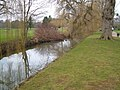 Sherford Stream, Vivary Park, Taunton - geograph.org.uk - 135523.jpg