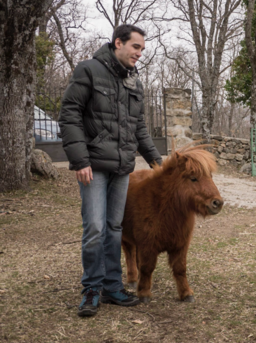 Shetland pony and young man in Madrid countryside