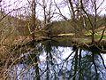 Shire - panoramio.jpg