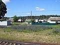 Sinezyorskiy, Bryanskaya oblast' Russia, 242110 - panoramio - Анатолий Таранцов (1).jpg
