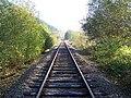 Single-Track Line To Knighton - geograph.org.uk - 591121.jpg