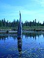 Snag in the wetland.JPG