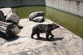 Sofia Zoo E94.jpg