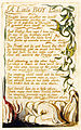 Songs of Innocence and of Experience, copy C, 1789, 1794 (Library of Congress) object 45 A Little Boy Lost.jpg