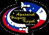 Soyuz TM-33 patch.png