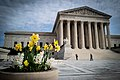 Springtime at SCOTUS (49661382628).jpg