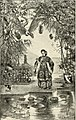 St. Nicholas (serial) (1873) (14780555405).jpg
