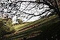 Steep Valleyside - geograph.org.uk - 269333.jpg