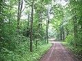 Steinbrucksweg - geo.hlipp.de - 14446.jpg