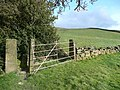 Stile and gate, Stainland - geograph.org.uk - 720388.jpg