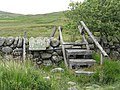 Stile on the path to Loch Whinyeon - geograph.org.uk - 1422491.jpg