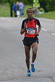 Stockholm Marathon 2013 17.jpg
