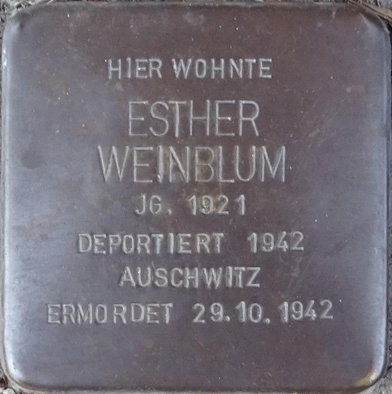 Stolpersteine Alsdorf Esther Weinblum Robert-Koch-Strasse 29.jpg