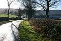 Sunny Dorset Lane - geograph.org.uk - 1120470.jpg
