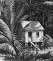 Swamp Cabin Drawing.jpg