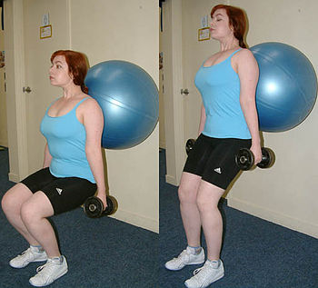An exercise ball allows a wide range of exercises to be performed.