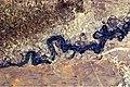 Syr Darya River Floodplain, Kazakhstan, Central Asia.JPG