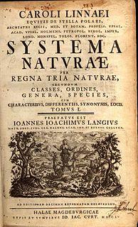 1735 1735