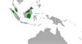 Tacua speciosa distribution map.png