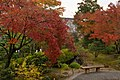 Tenryu-ji (3261769959).jpg