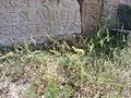 Territoires et monuments de l'Antique Diana Veteranorum (Zana) 45.jpg