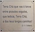 Texto de Darío X. Cabana nunha xardineira en Vilalba. Galiza-17.jpg