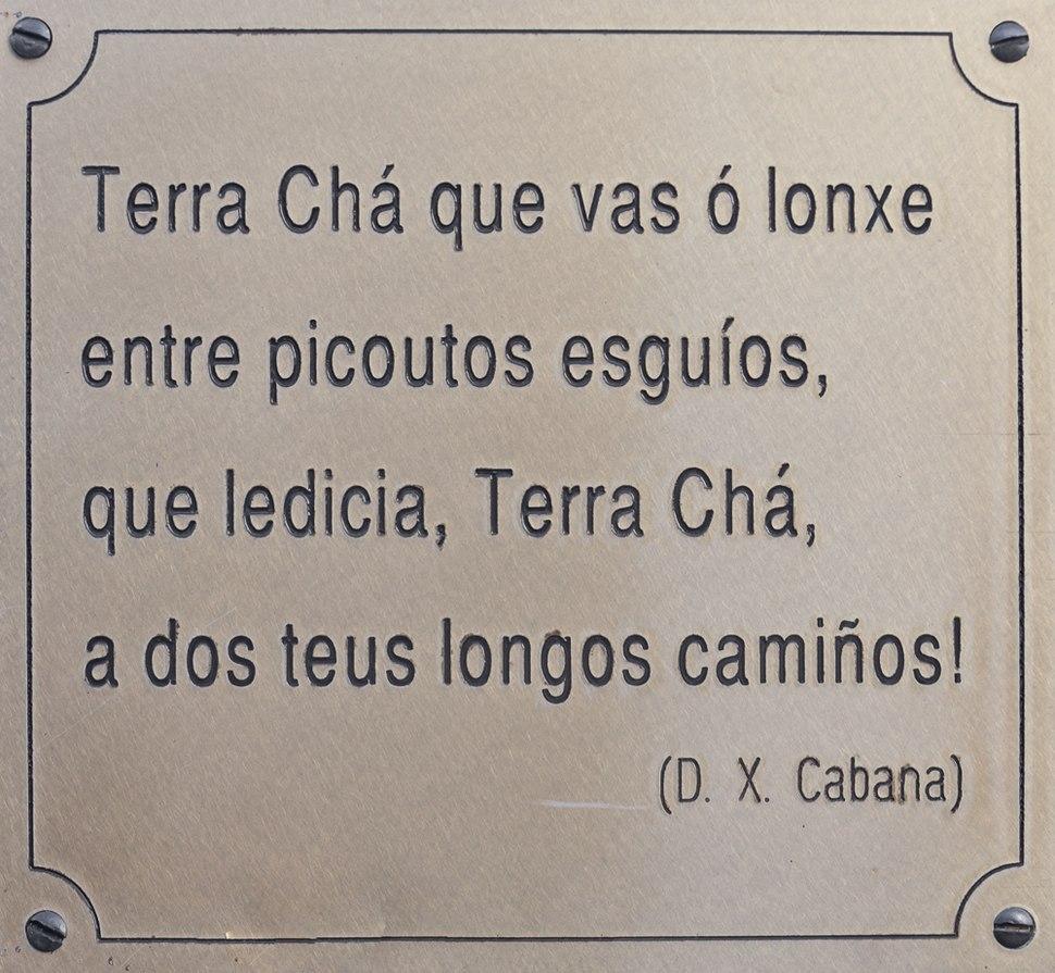 Texto de Darío X. Cabana nunha xardineira en Vilalba. Galiza-17