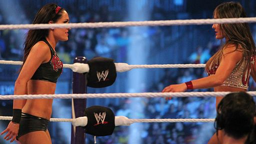 The Bella Twins WMXXX