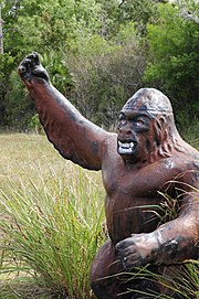 The Florida Skunk Ape - panoramio.jpg