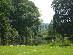 The Lake at Mount Ephraim Gardens, Hernhill - geograph.org.uk - 836185.jpg