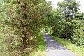 The Mawddach Trail near Dolgellau - geograph.org.uk - 1428479.jpg
