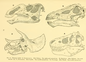 The Osteology of the Reptiles-105 dfghg.png