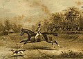 The author on his favourite Horse Harlequin.jpg
