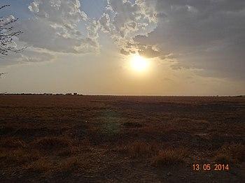 The grasslands of the Velavadar Blackbuck National Park.jpg