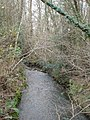 The stream from Hart's Bridge - geograph.org.uk - 297511.jpg