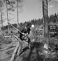They Learn To Be Lumberjills- Women's Land Army Forestry Training, Culford, Suffolk, 1943 D14098.jpg