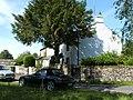 Thwaites Cottages - geograph.org.uk - 202809.jpg