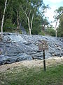 Tikal Temple IV resoration work 2010.jpg