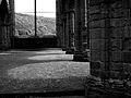 Tintern Abbey from the inside - sun.JPG