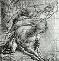 Tiziano, studio per cavallo e cavaliere.jpg