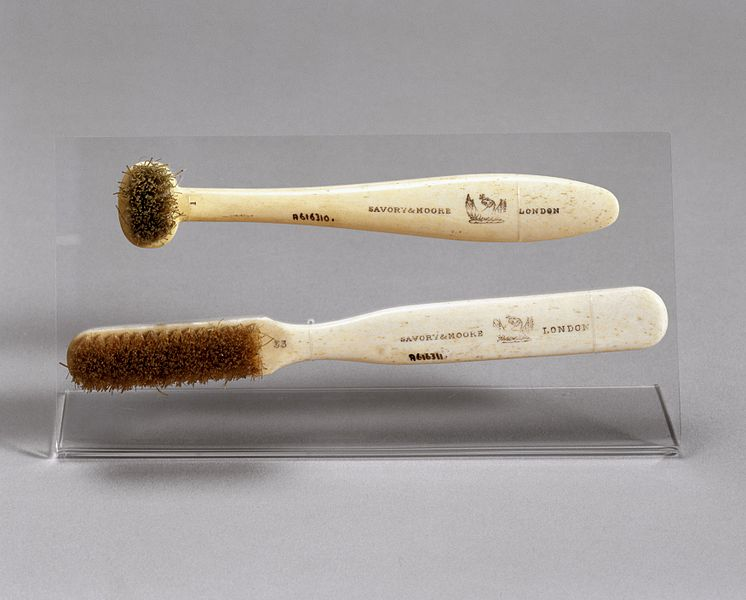 File:Toothbrush with horsehair bristles, London, England, 1870-19 Wellcome L0058098.jpg