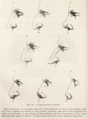 Herbert Hope Risley - Image: Topinard nasal index
